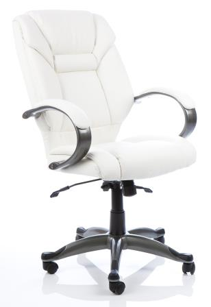Garvi managerial chair with anthracite colour base in white bonded leather finish
